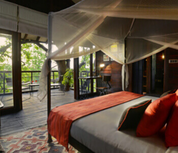 tree-house-resorts-in-pench
